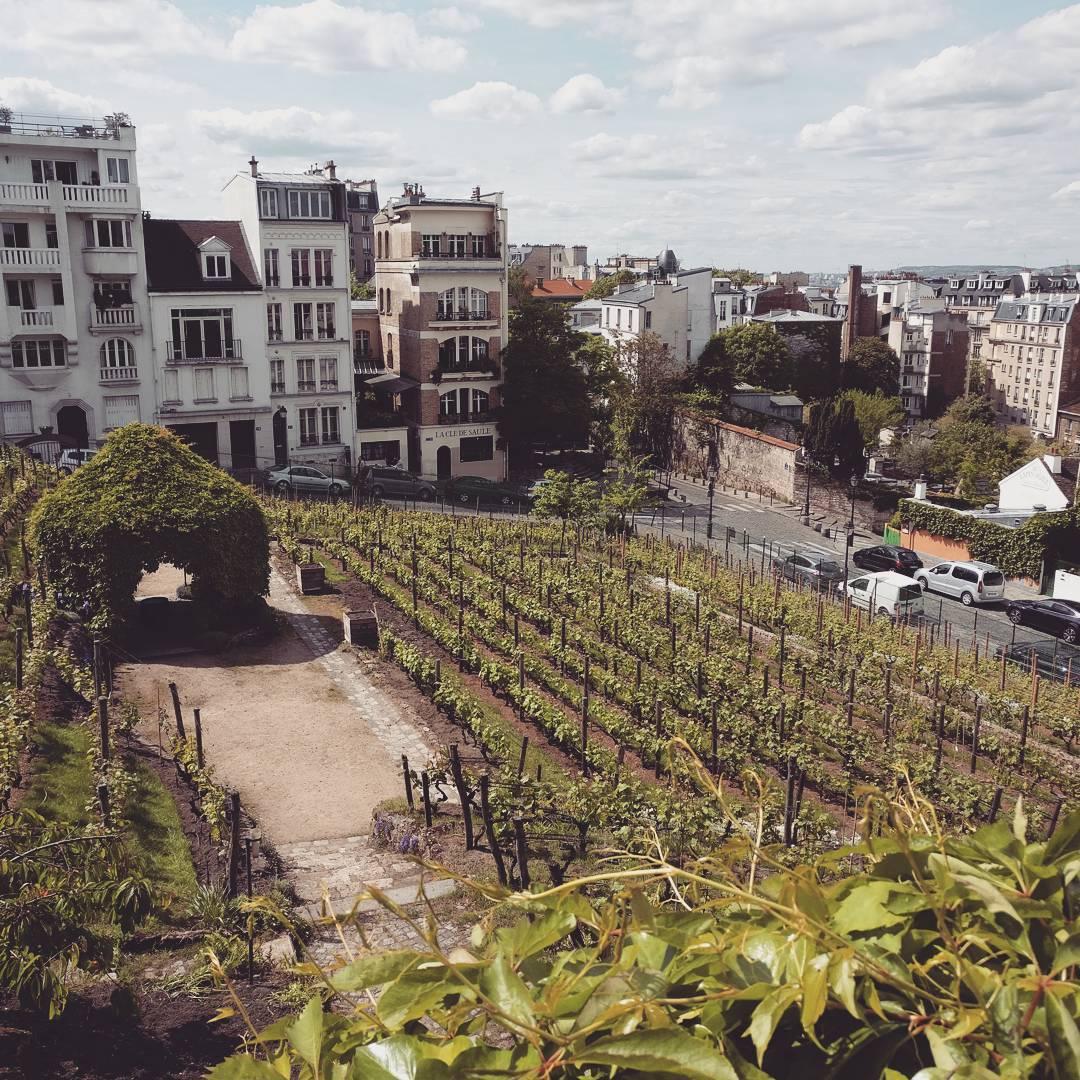Un jour à Montmartre